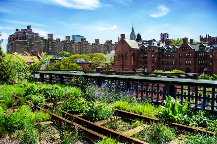 Skyline and gardens seen from the New York City High Line in Chelsea