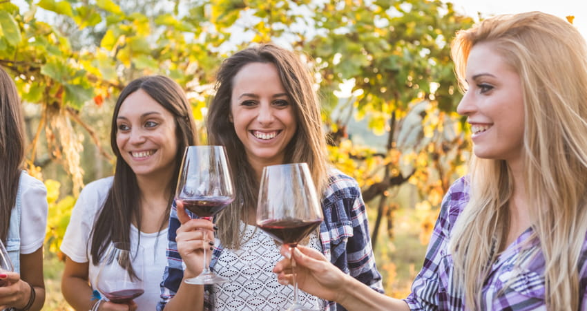 group of women toasting red wine glasses in a vineyard