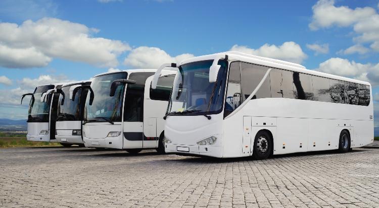 fleet of full-sized charter buses